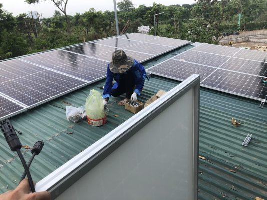 Lắp điện mặt trời cho Farmstay